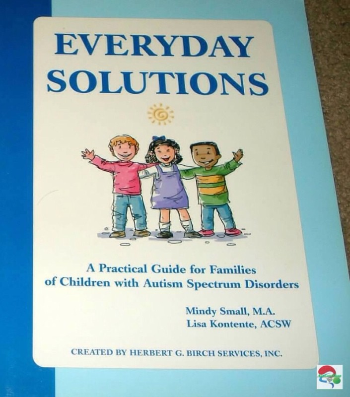 Practical Guidelines For Practical Fitness Solutions: Everyday Solutions: A Practical Guide Autism Wing Daily